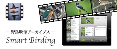 iPad アプリ「SmartBirding〜野鳥映像アーカイブス〜」