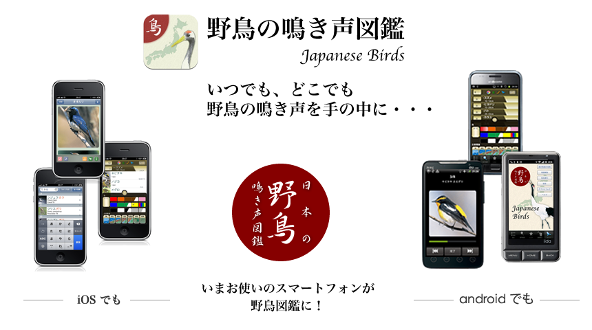 JapaneseBirds