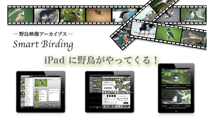 SmartBirding